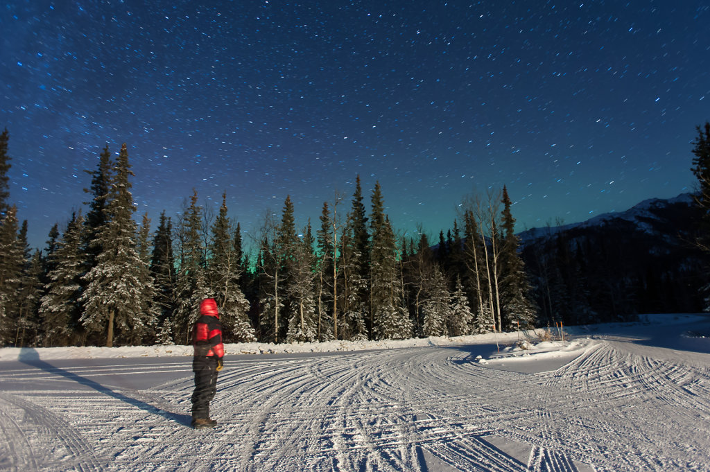 Waiting for the Aurora in Denali N.P. (Alaska / USA)