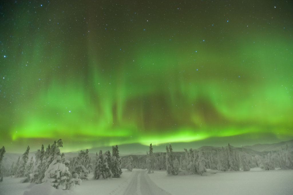 Northern Lights near Chena Hot Springs (Alaska / USA)